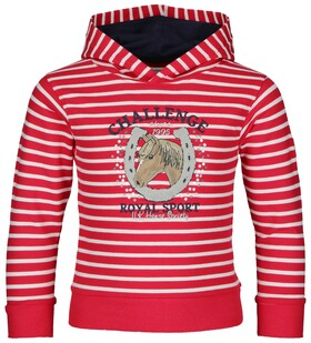 Sweat Wild & Fee stripe Kapuze