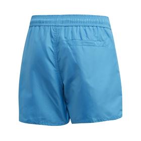 Classic Badge of Sport Swim Shorts