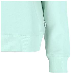 Sweatshirt, longsleeve, crewneck, g