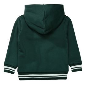 Sweatshirt mit Frottee-Applikation