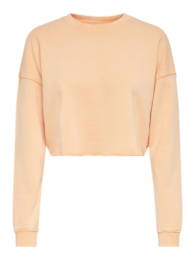 ONLZIA LIFE L/S CROPPED SWT
